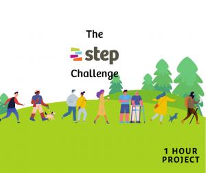 The Step Challenge - 2 million steps walking